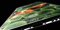 Rộ tin đồn iPhone 9 có thể uốn cong được
