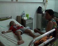 Bé trai 6 tuổi suýt chết vì bị bạch tuộc cắn