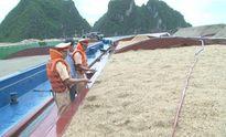 Quảng Ninh: Bắt giữ 4 tàu vận chuyển 2750 m3 cát không rõ nguồn gốc
