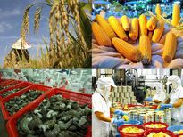 Ngành nông nghiệp nỗ lực đạt mục tiêu tăng trưởng 3,05%