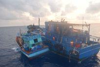 Bắt 2 tàu sang mạn dầu trái phép trên biển