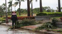 Bão số 2: Tàu chìm ở Nghệ An, 13 thuyền viên mất tích; Hà Tĩnh nhiều nhà sập