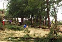 Bão số 2 vào Hà Tĩnh, nhiều nhà dân bị sập