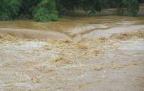 Đồng bằng sông Cửu Long cần chủ động ứng phó với đợt lũ sớm