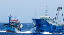 Tàu cá Trung Quốc thường khai thác cách Đà Nẵng 40-50 hải lý