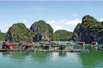 Đến thăm làng chài cổ nhất Việt Nam ở Cát Bà