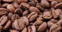 Giá nông sản hôm nay 20.7: Cà phê tụt mạnh, tiêu có nơi lên 80.000 đ/kg