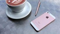 iPhone SE sẽ không còn là chiếc smartphone nhỏ nhất của Apple?
