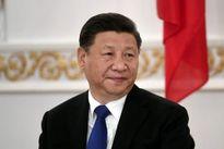 Kinh tế Trung Quốc lo lắng vì 'thiên nga đen' và 'tê giác xám'