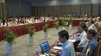 Kiến nghị hoàn trả lại rừng cho bán đảo Sơn Trà