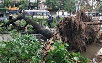 VNPT đảm bảo thông tin liên lạc trong bão số 2