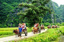 Nét đẹp bình dị thôn quê ở Ninh Bình