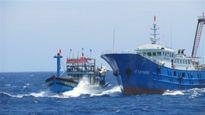 Hai tàu cá Bình Định bị tàu Trung Quốc lấy ngư cụ