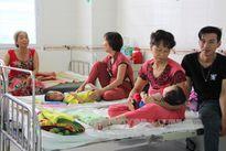 Đồng bằng sông Cửu Long: Bệnh sốt xuất huyết có chiều hướng tăng cao