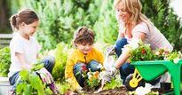 Tiếp xúc với thiên nhiên giúp trẻ tăng 5% khả năng ghi nhớ