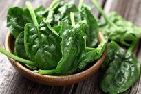 Những lợi ích rau chân vịt mang lại cho sức khoẻ mà bạn không biết