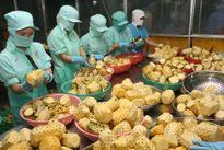 Một số vấn đề về xuất khẩu nông sản chủ lực của Việt Nam