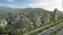 Thành phố rừng đầu tiên ở Trung Quốc
