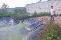 Rơi xuống hố biogas, bé gái 9 tuổi tử vong