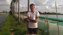 Lão nông cho sinh sản nhân tạo thành công nhiều loại thủy sản quý