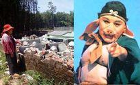 Trư Bát Giới hoan nghênh phong trào 'giải phóng' lợn của cán bộ Tam Kỳ
