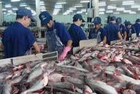 Kiểm soát dư lượng hóa chất, kháng sinh trong nuôi trồng thủy sản