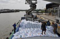 Nhập khẩu phân bón theo Cơ chế một cửa Quốc gia: Thông thoáng