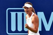 Sharapova tái xuất ấn tượng ở California