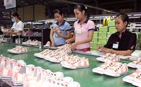 Hà Giang phát triển các vùng kinh tế động lực