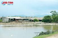 Trại chăn nuôi 'vây' Nhà máy nước Bắc Thạch Hà: Đừng để 'cái sảy nảy cái ung'!