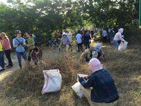Đà Nẵng: Nhiều mô hình bảo vệ môi trường hiệu quả