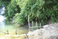 Quảng Ngãi: 36 hộ lo sông cuốn hết đất ở