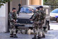 Bắt giữ một nghi phạm liên quan vụ đâm xe vào binh sĩ Pháp