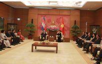 Chủ tịch Quốc hội tiếp Đoàn Thượng viện Vương quốc Campuchia