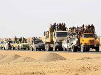 Hàng nghìn người nhập cư châu Phi bị bỏ rơi ở sa mạc Sahara