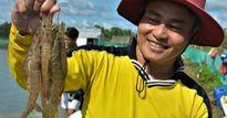 Chỉ nuôi tôm 1 vụ, dân bán đảo Cà Mau đã thành tỉ phú