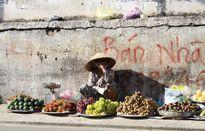 Mẹ già 85 tuổi tần tảo nuôi con ngây dại giữa Sài Gòn