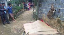 Hỗn chiến với cha con người hàng xóm, thanh niên tử vong tại chỗ