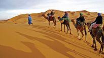 Gian nan hành trình đi tìm vàng trắng ở sa mạc Sahara