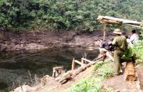 Lũ ống cục bộ tại Vườn quốc gia Hoàng Liên làm ba người chết và mất tích