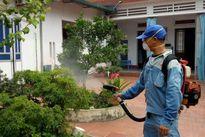 4 cách diệt trừ muỗi truyền bệnh sốt xuất huyết