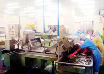 Doanh nghiệp nội chi 250 tỉ đồng cho nhà máy kim chi
