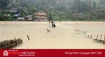 Lào cai: 150 hộ dân bị cô lập do mưa lớn, nông nghiệp thiệt hại nặng
