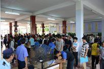 Đại học Đà Nẵng: Ngành Công nghệ thông tin tuyển đủ chỉ tiêu nguyện vọng 1