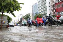 Phó Thủ tướng yêu cầu cấp bách sửa đường Nguyễn Hữu Cảnh