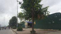 Cán bộ phường Trung Văn bị khủng bố khi xử lý vi phạm xây dựng
