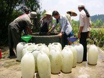 Chung tay đảm bảo an ninh lương thực, thích ứng với biến đổi khí hậu