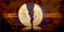 Bitcoin cash tăng hơn 2 lần, vượt ngưỡng 700 USD/đồng trong 2 ngày