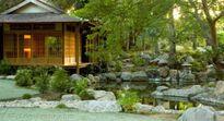 Hướng dẫn thiết kế không gian sân vườn phủ kín cây xanh