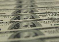 Tỷ giá ngoại tệ ngày 19/8: USD tiếp tục giảm